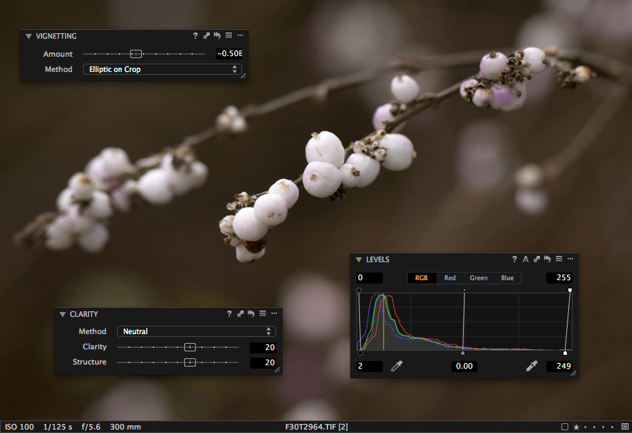 screenshot of Clarity, Levels and Vignetting tool in Capture One