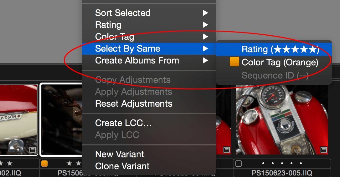 Capture One, Select By Same, Rating