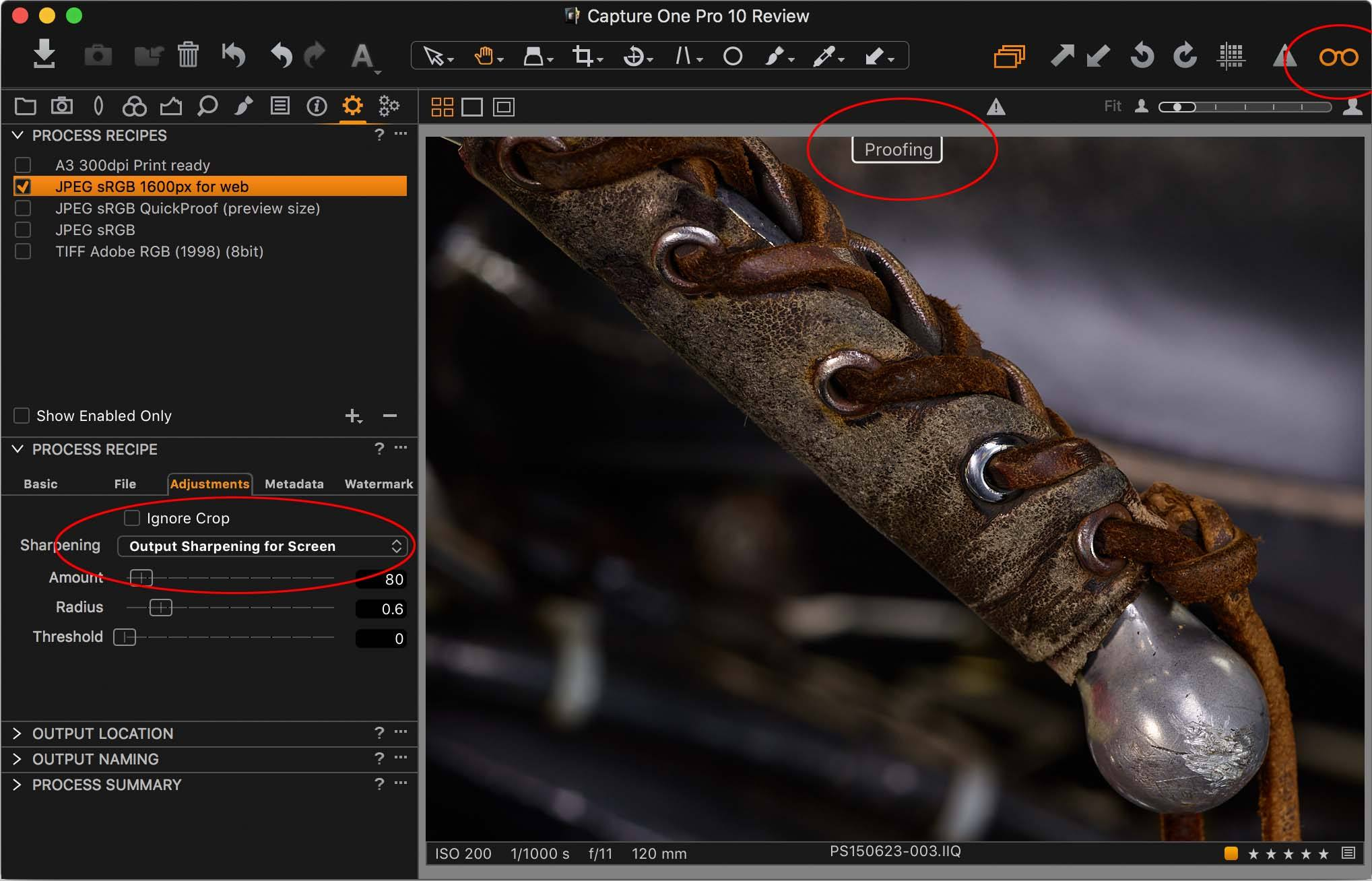capture one pro 10, recipe proofing