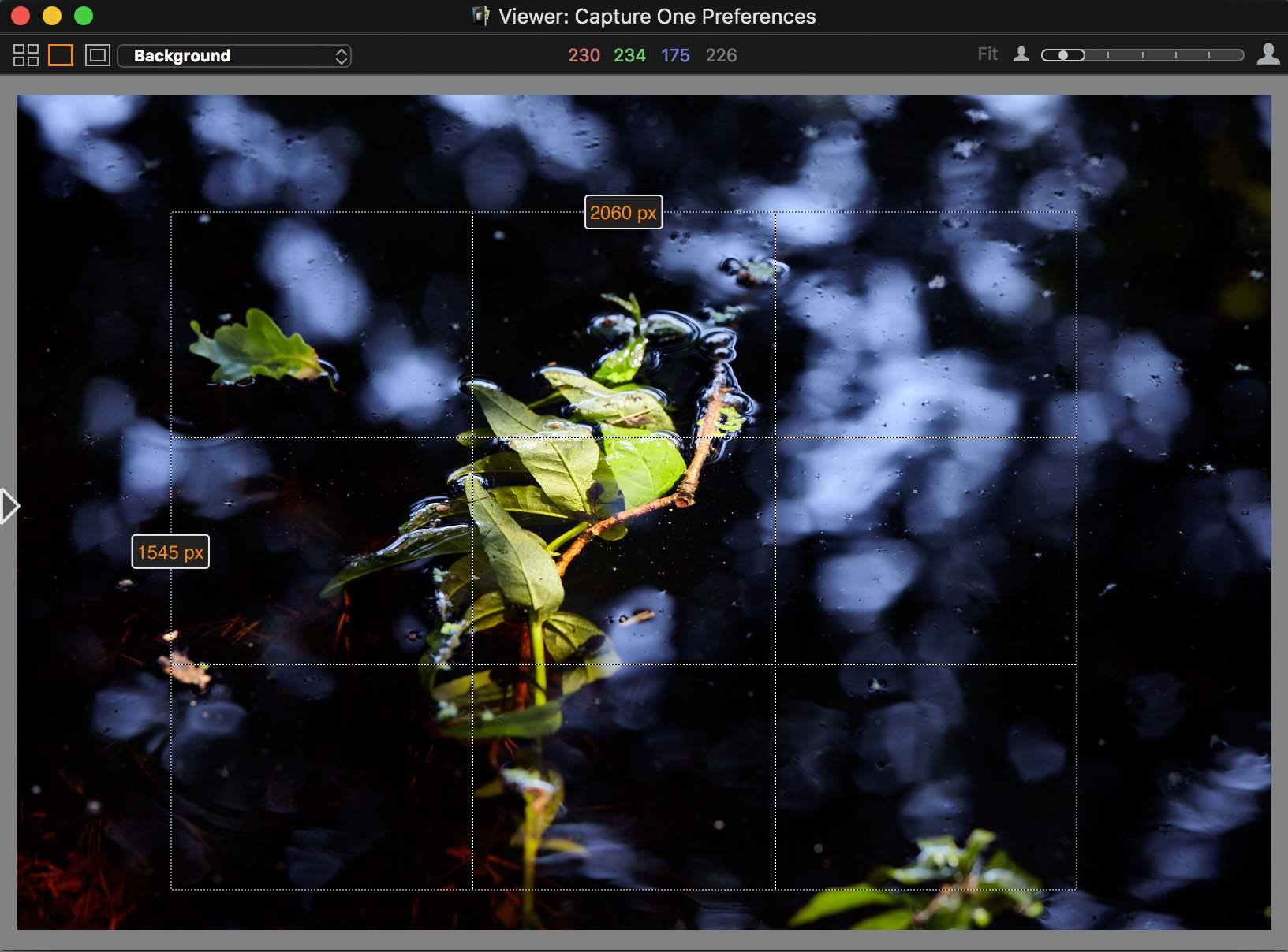 capture one pro 10, viewer, frame during crop
