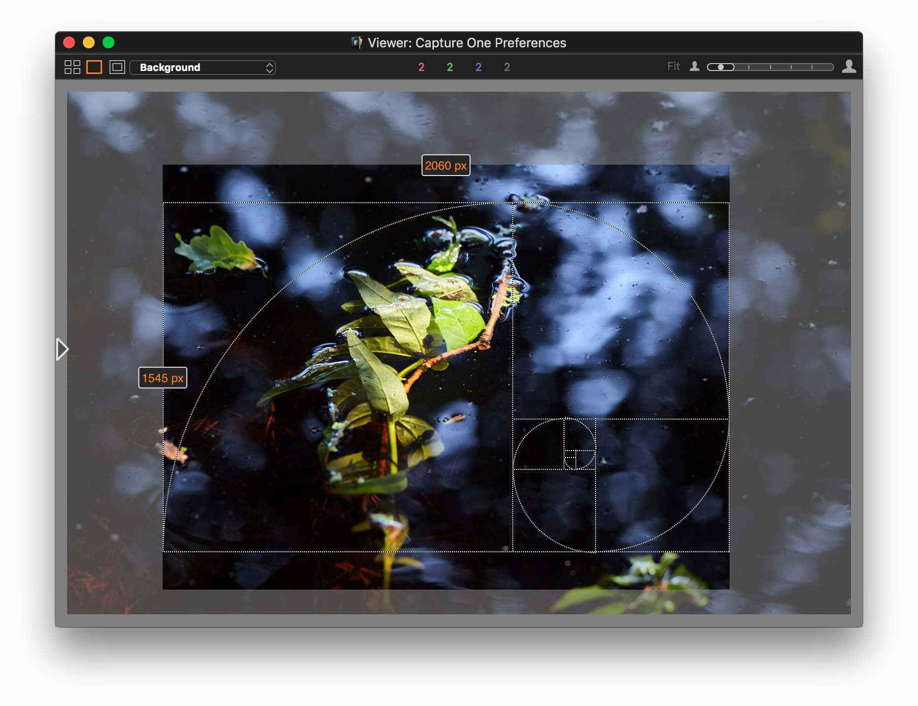 capture one pro 10, viewer, grid, fibonacci