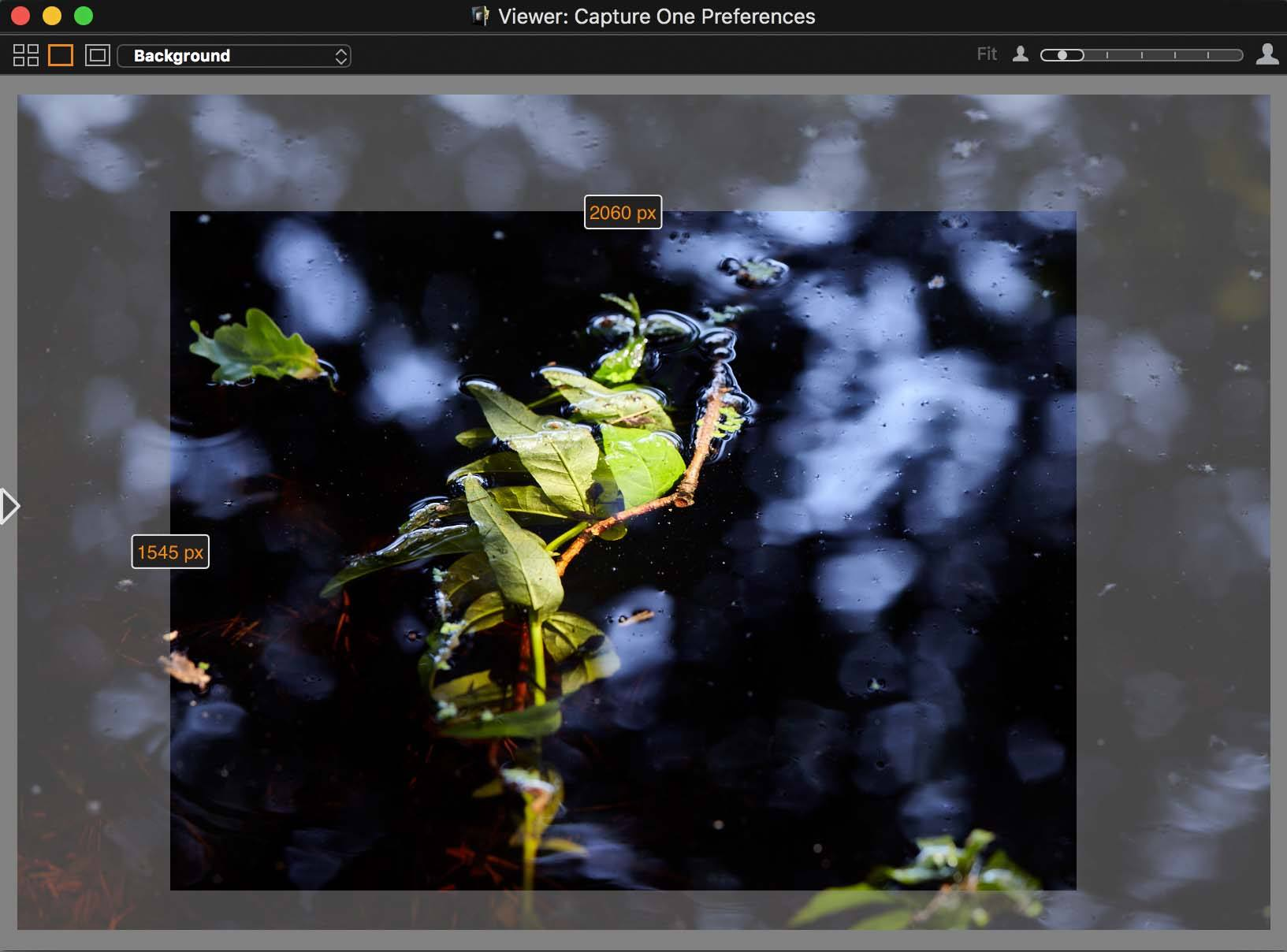 capture one pro 10, viewer, mask after crop
