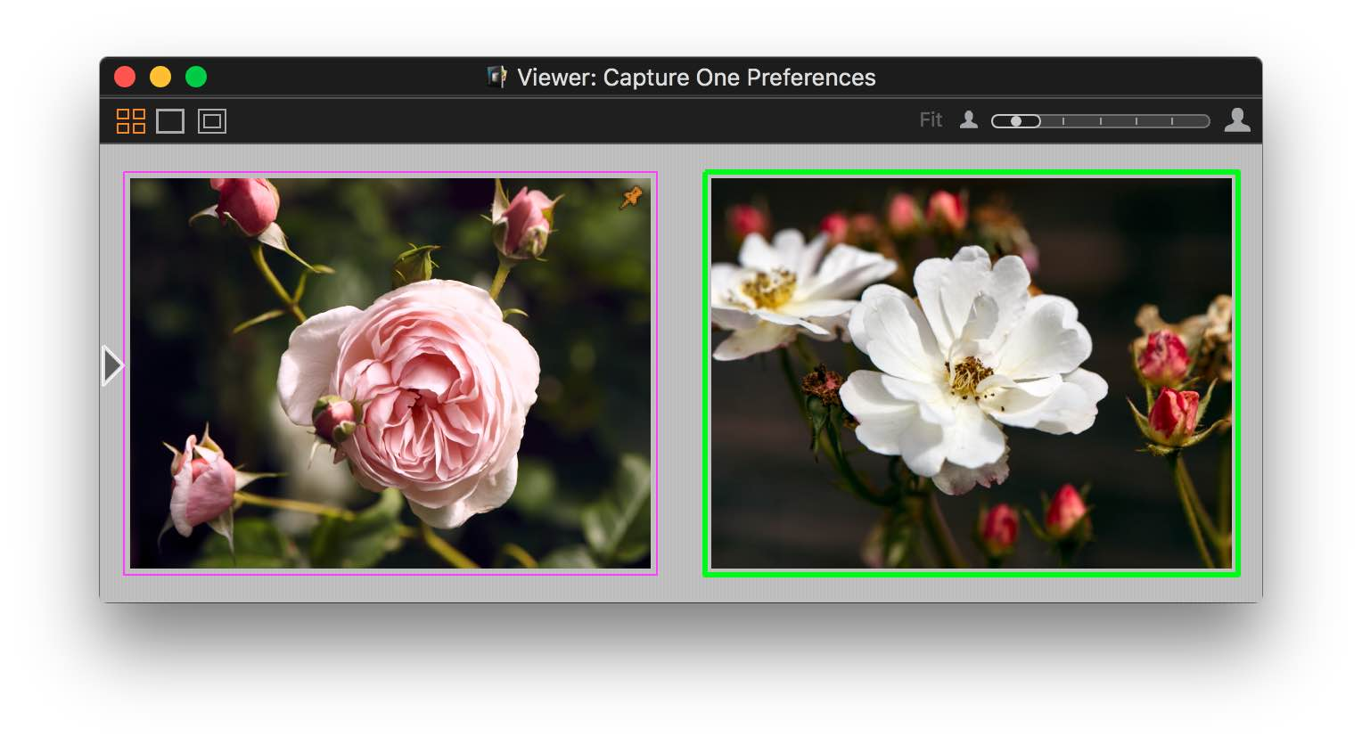 capture one 10, viewer, changed variant colors