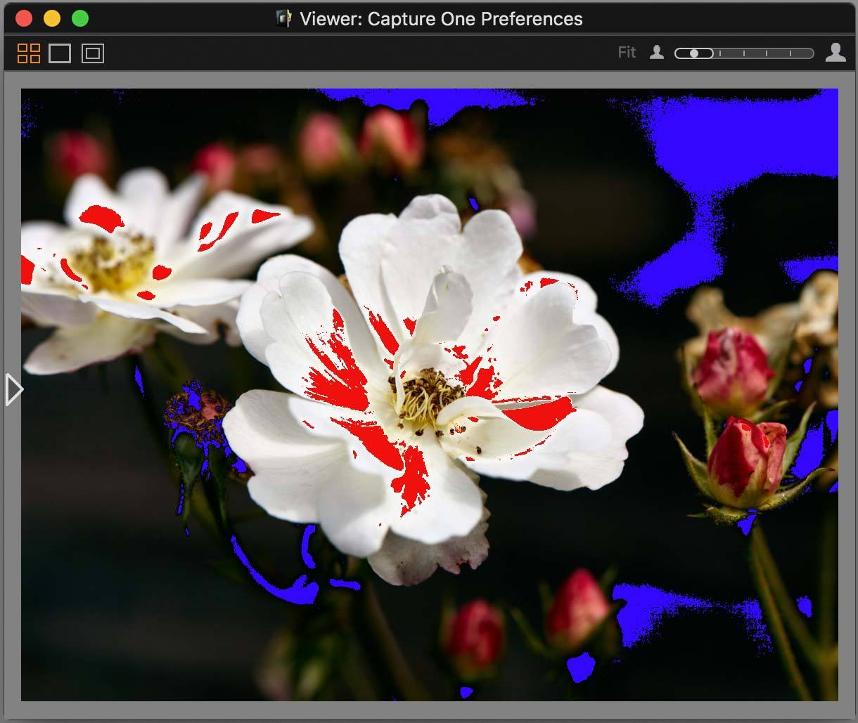 capture one pro 10, viewer, with exposure warning