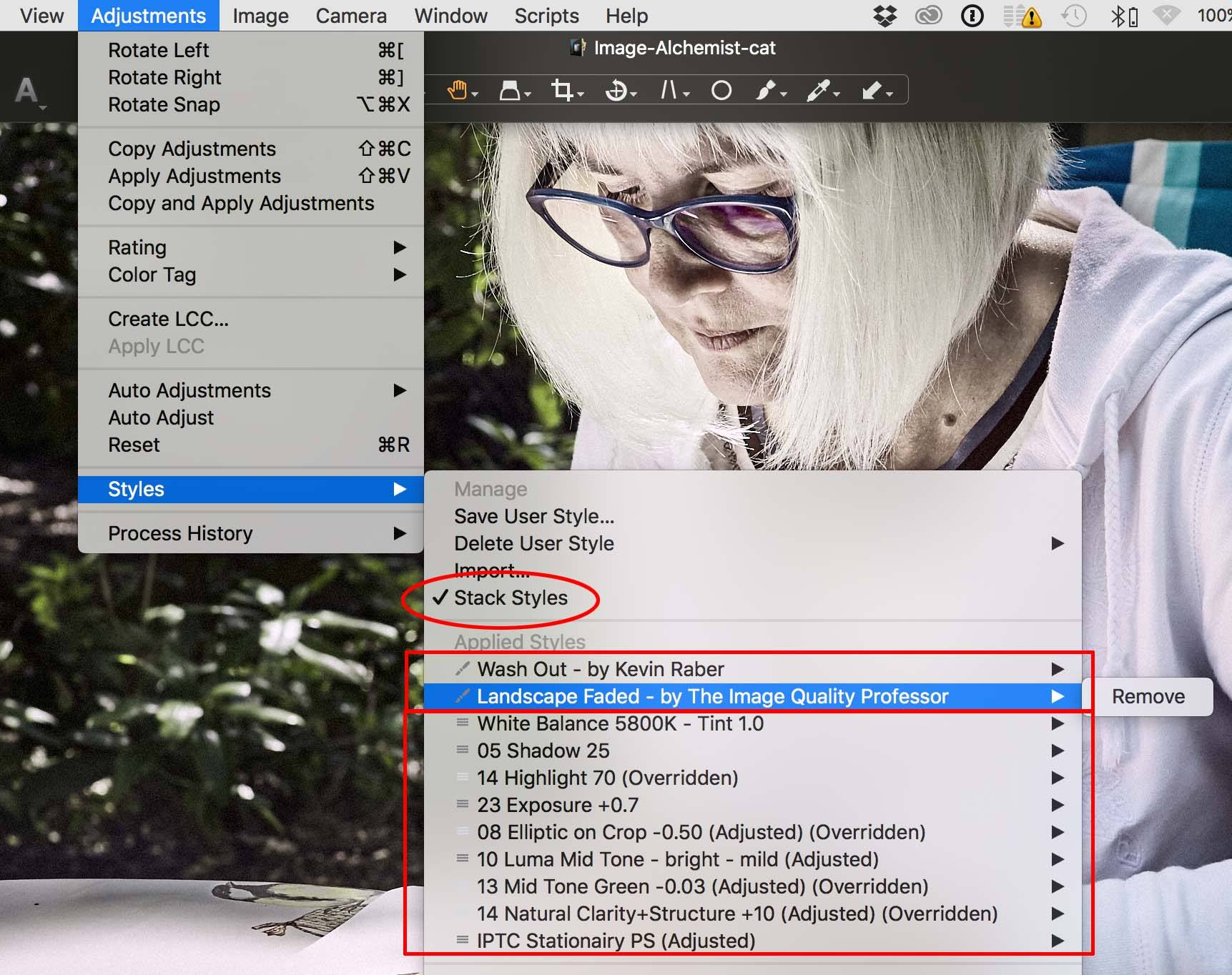 stacking capture one presets, capture one pro 10 Styles