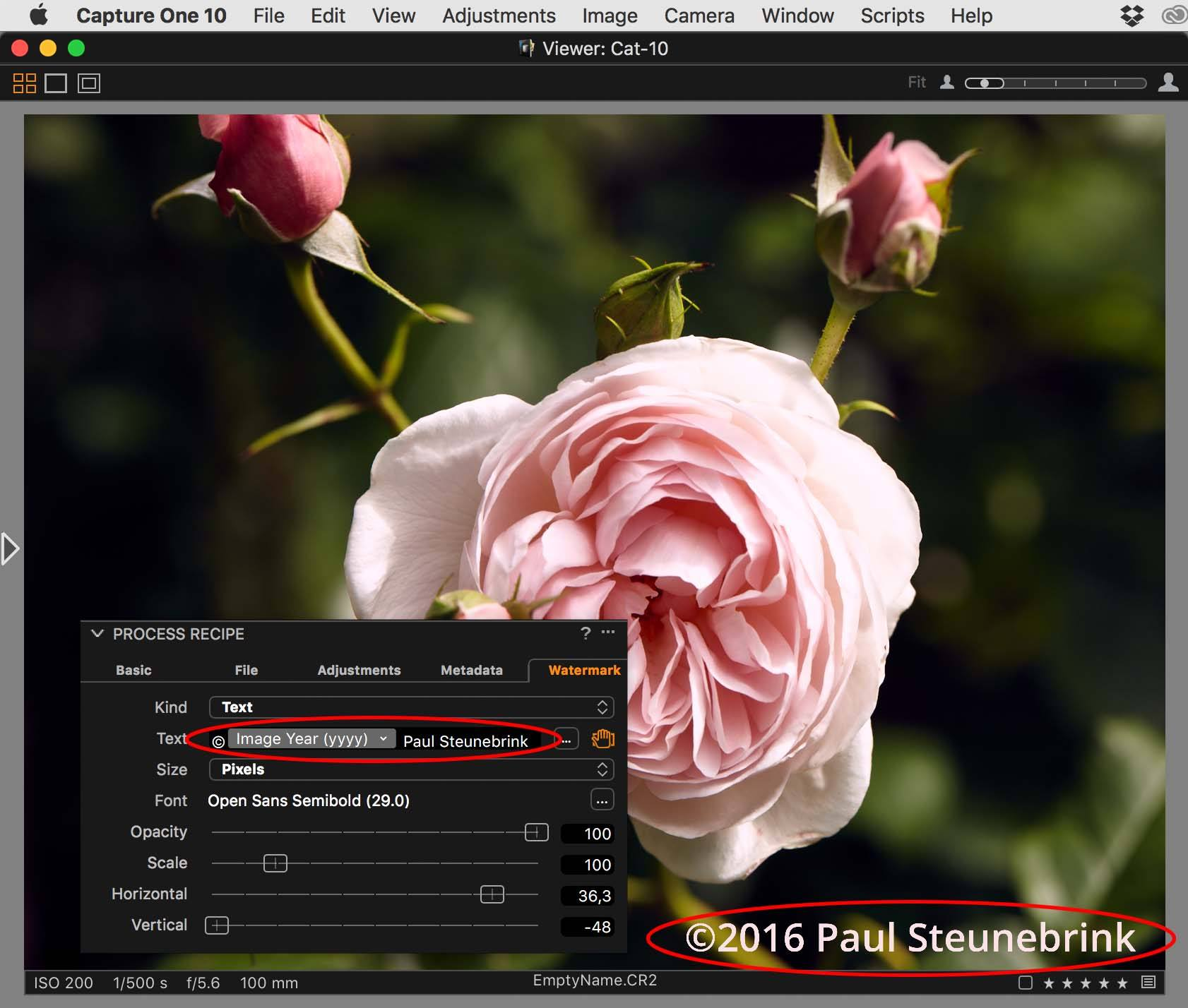 capture one pro 10.1 review, watermark with token