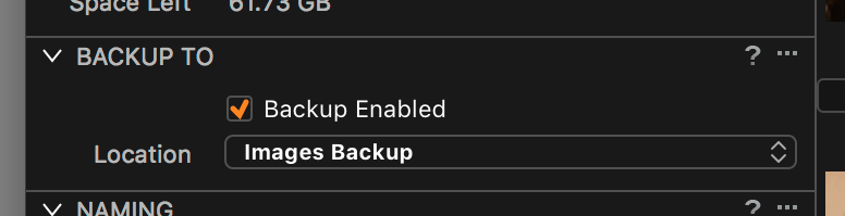 importing images into capture one, backup enabled