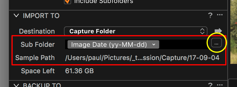 importing images into capture one, import to catalog, sub folder