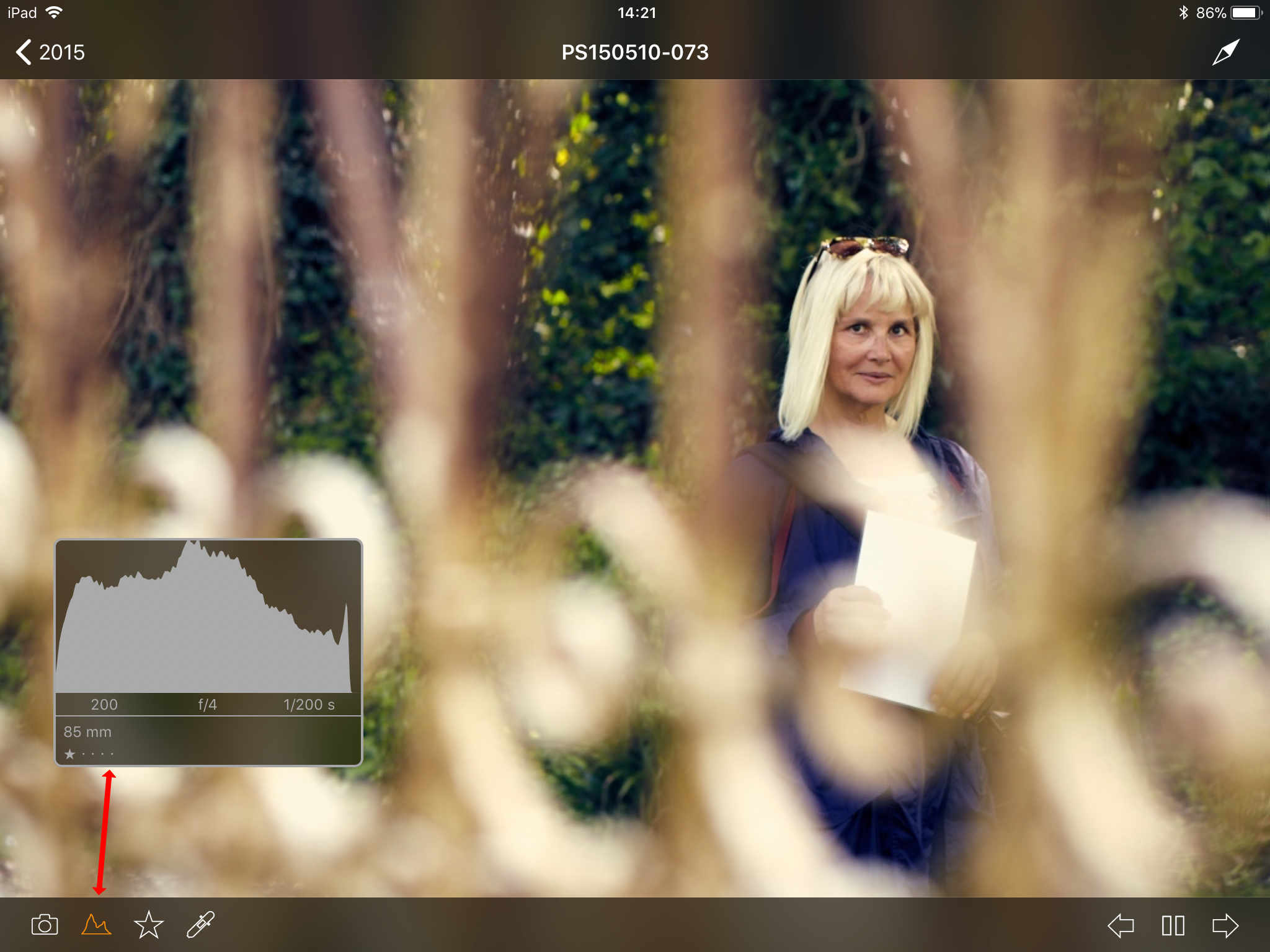using capture pilot with capture one, capture pilot app, histogram