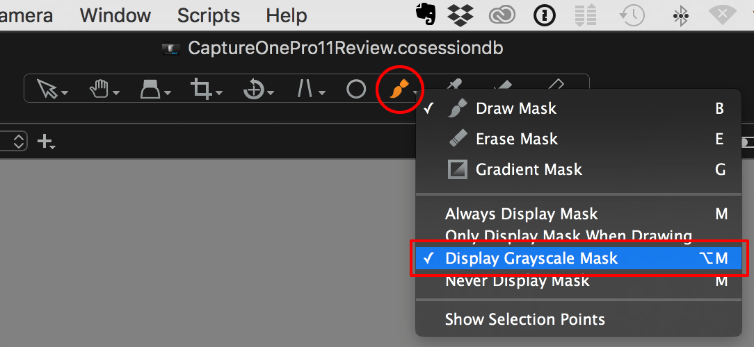 capture one pro 11 review, cursor tools, greyscale mask