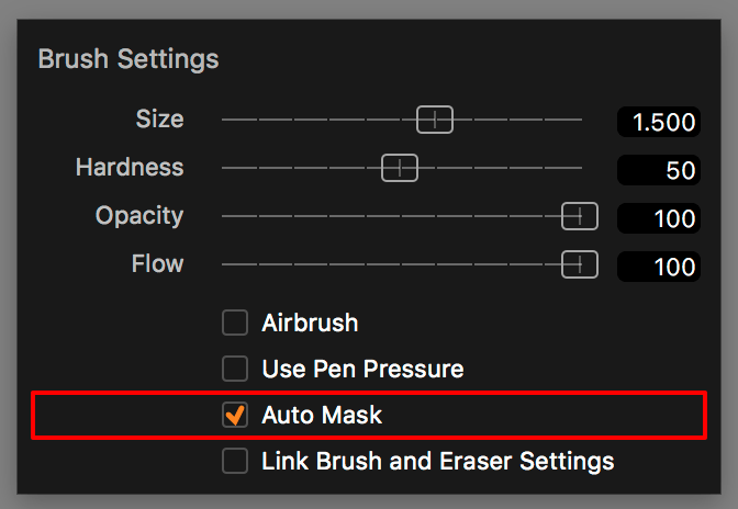 brush settings, auto mask