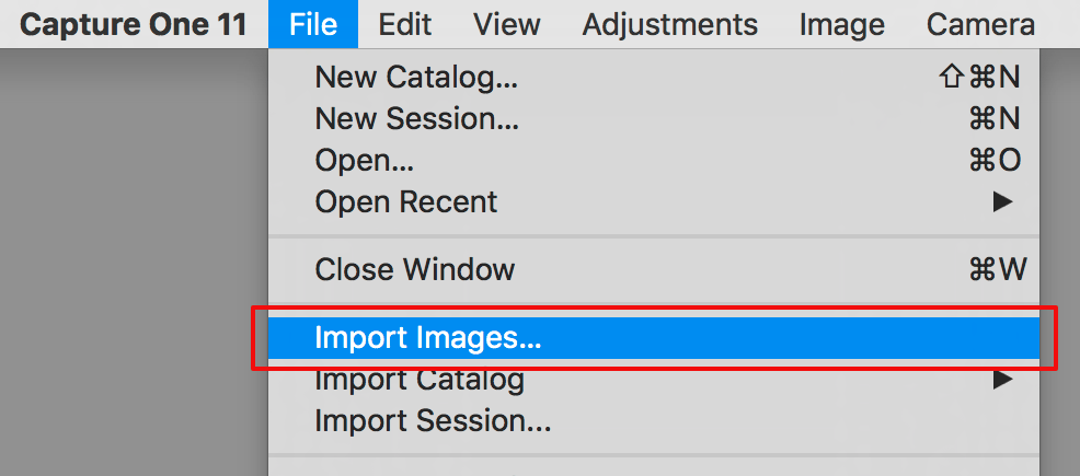 your 30-day capture one trial, import images