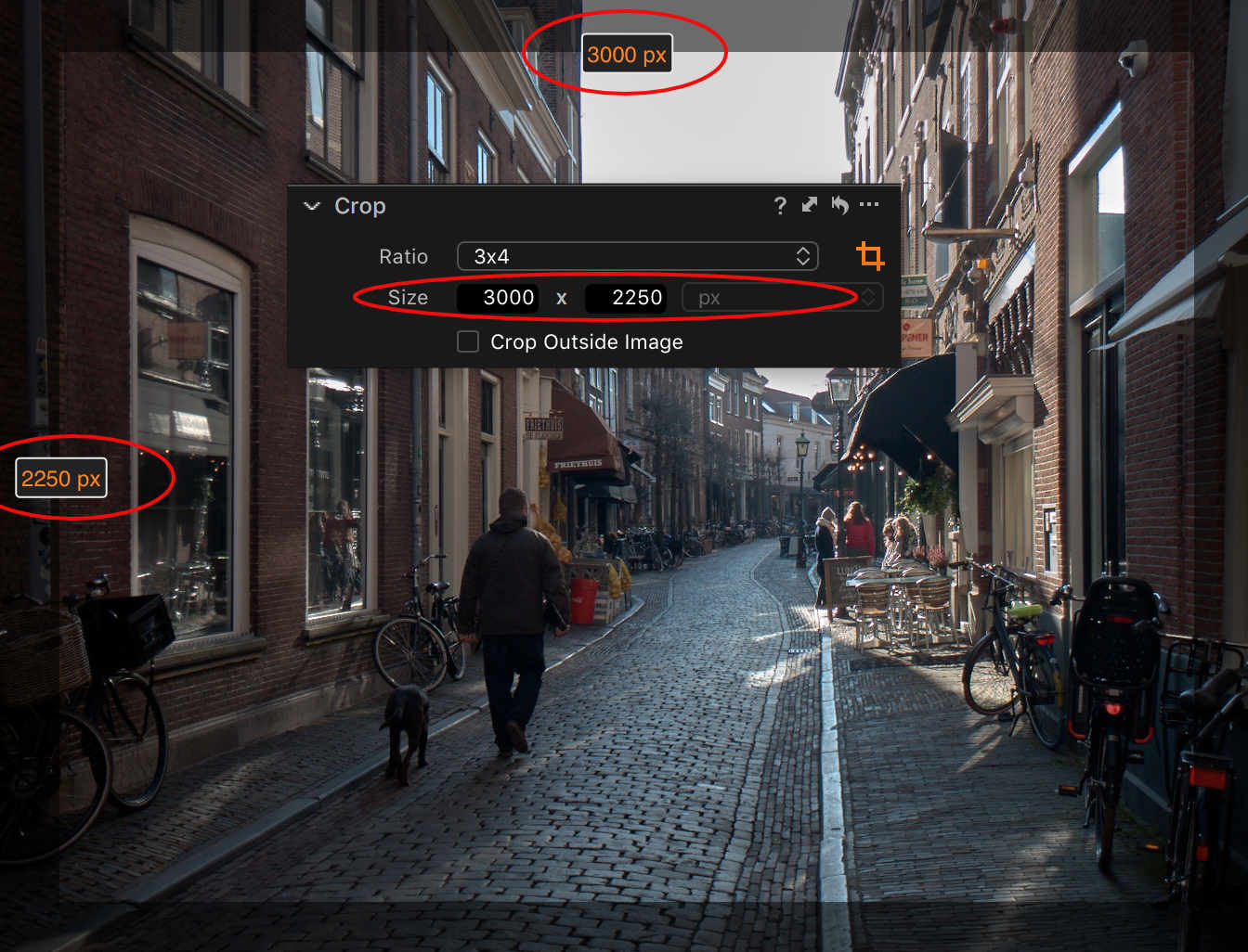 capture one composition tools, crop tool, units
