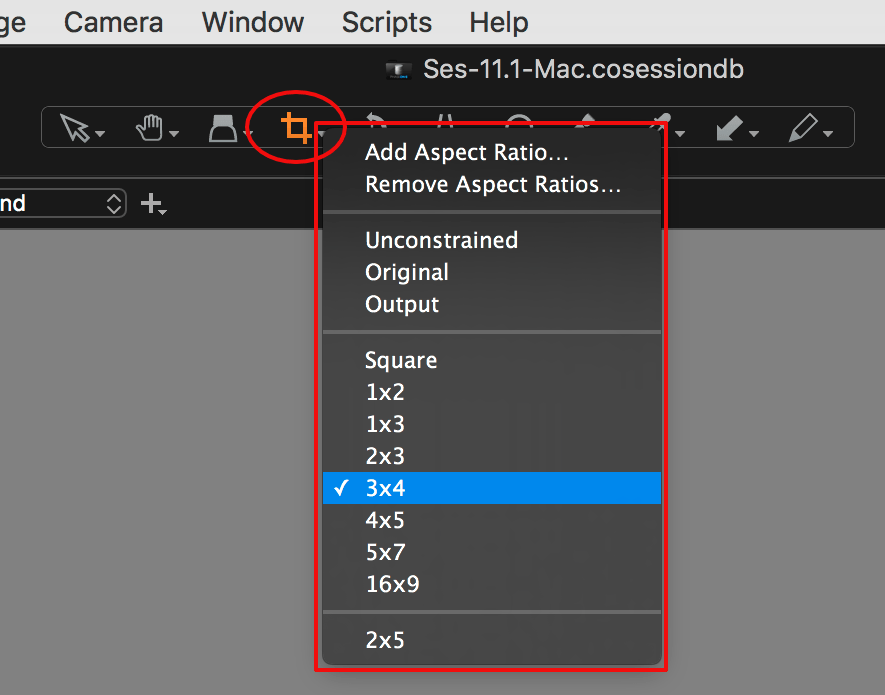 capture one composition tools, cursor tool for crop, crop ratios