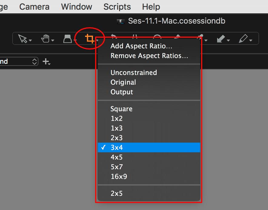 Capture One Composition Tools • Image Alchemist