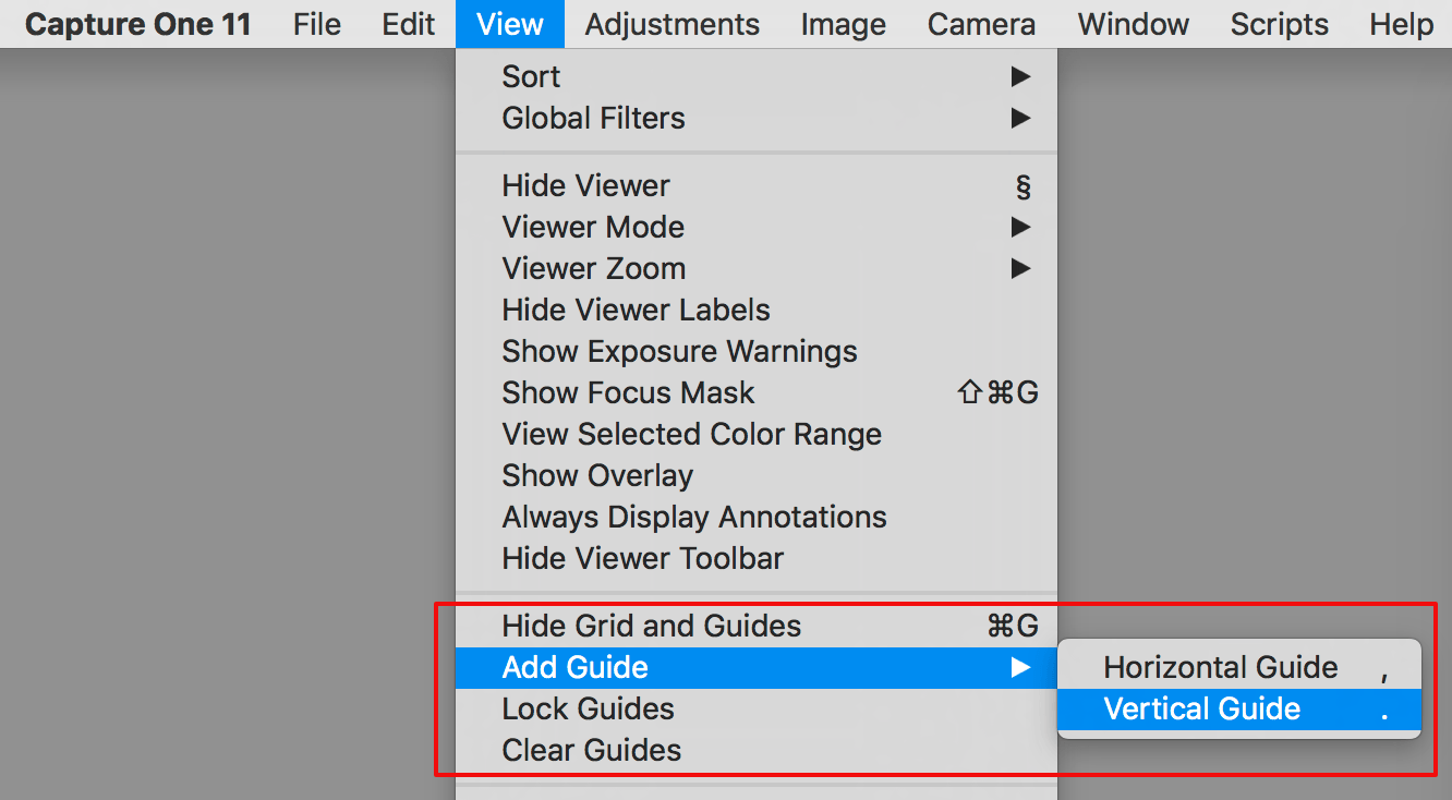 capture one composition tools, view menu, grid and guides