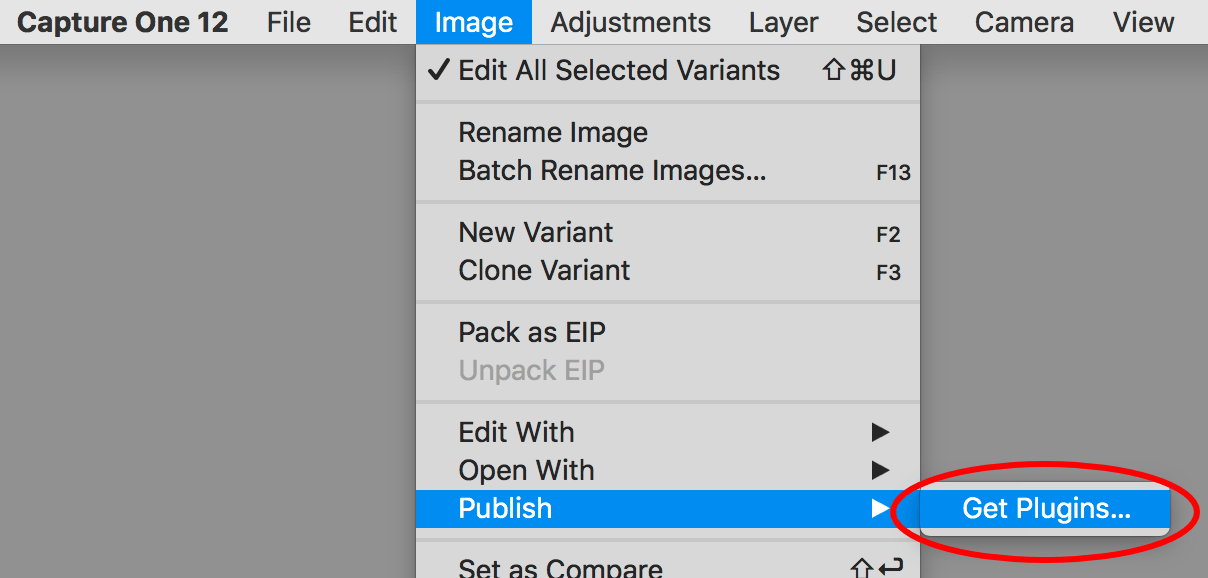capture one pro 12 review, publish command in image menu