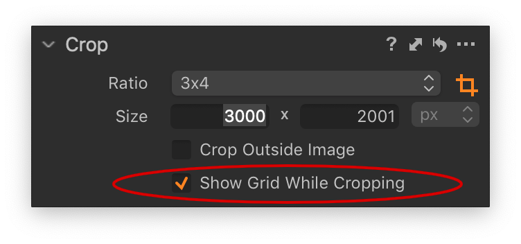 crop tool, show grid while cropping, capture one 12.1