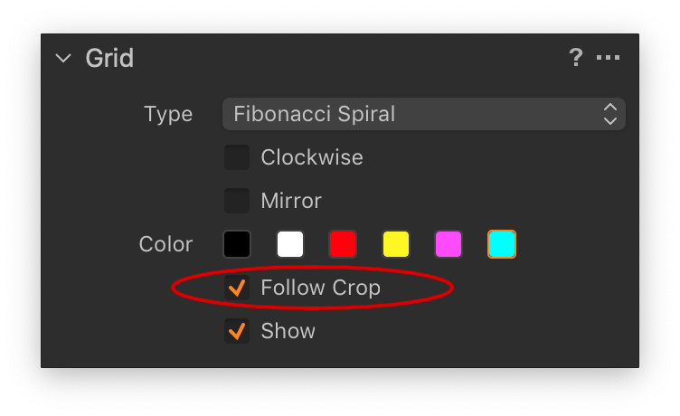 capture one, grid tool