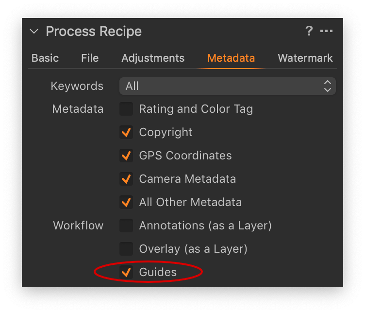 capture one, process recipe tool in capture one enterprise, metadata tab