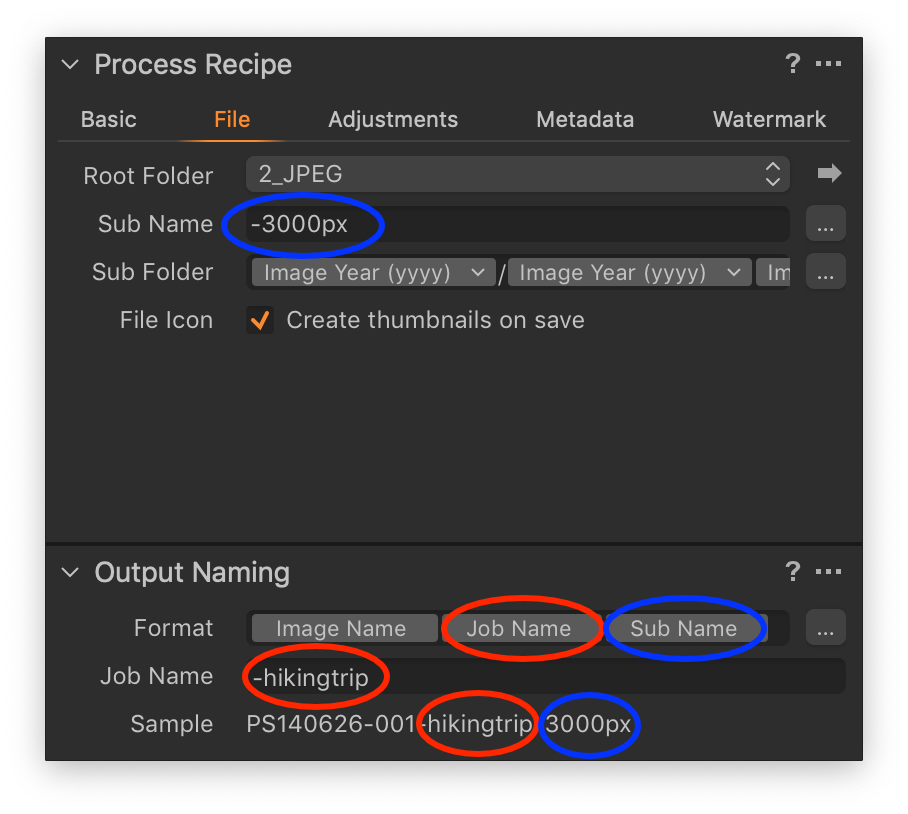 process recipe tool, output naming tool, capture one 20