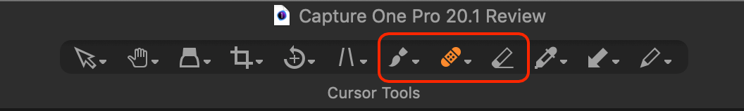select different brushes, capture one 20.1