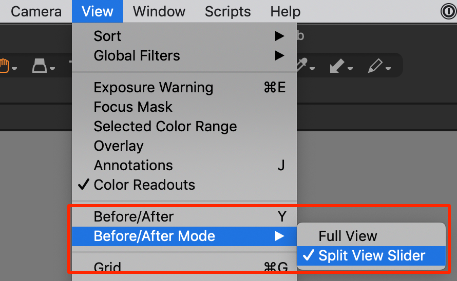 capture one 20.1, view menu, before/after feature, two modes