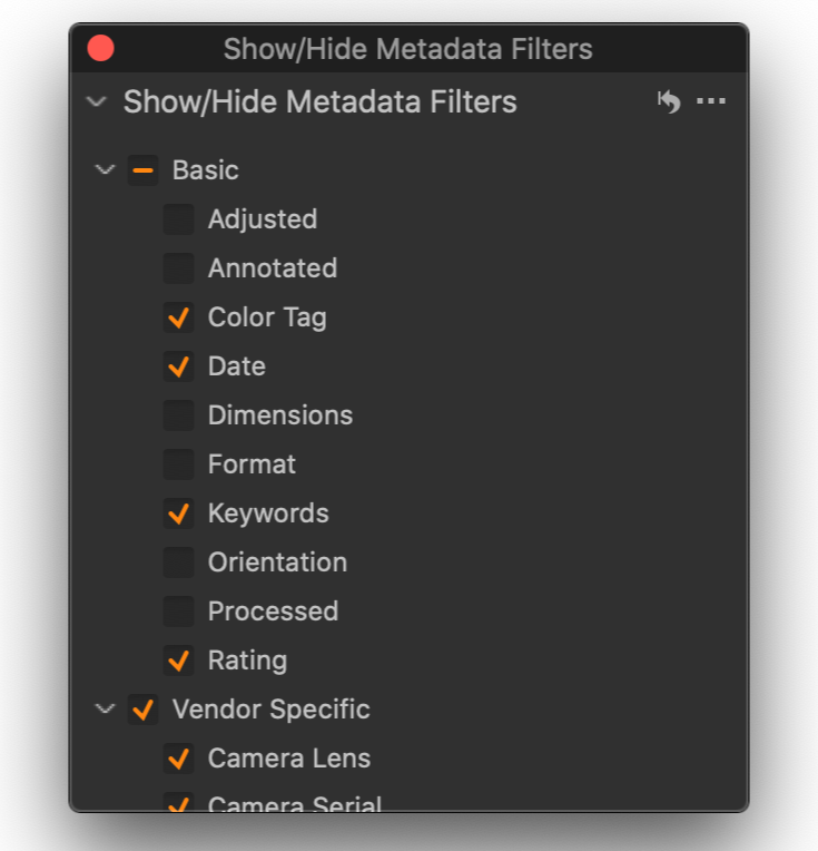 show and hide metadata filters, filters tool, capture one 20