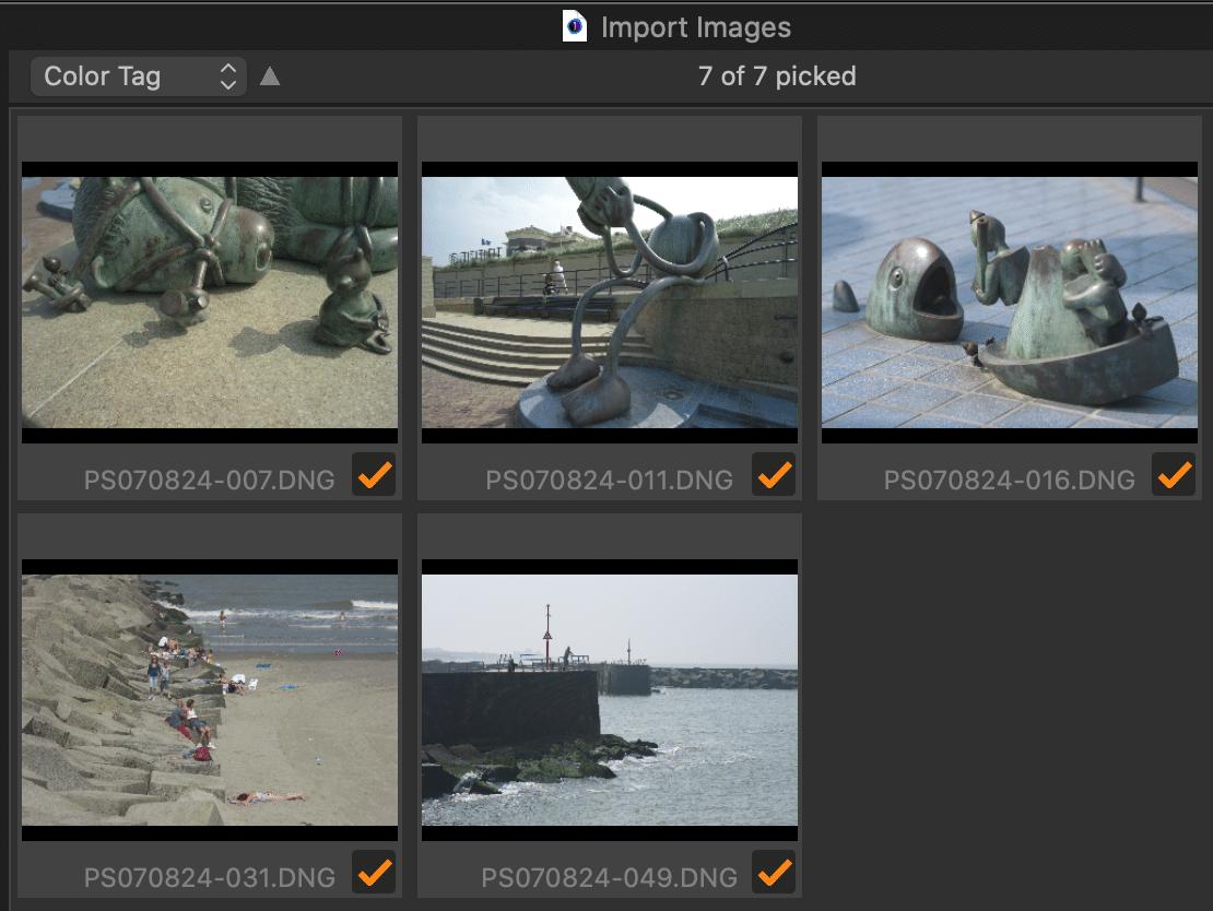 image importer, thumbnails, capture one 21
