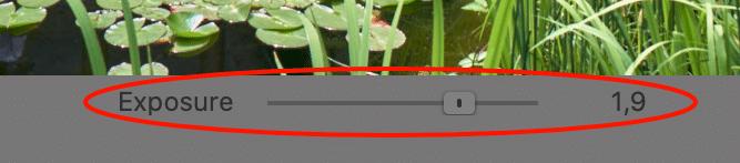 speed edit, animated slider, capture one 21