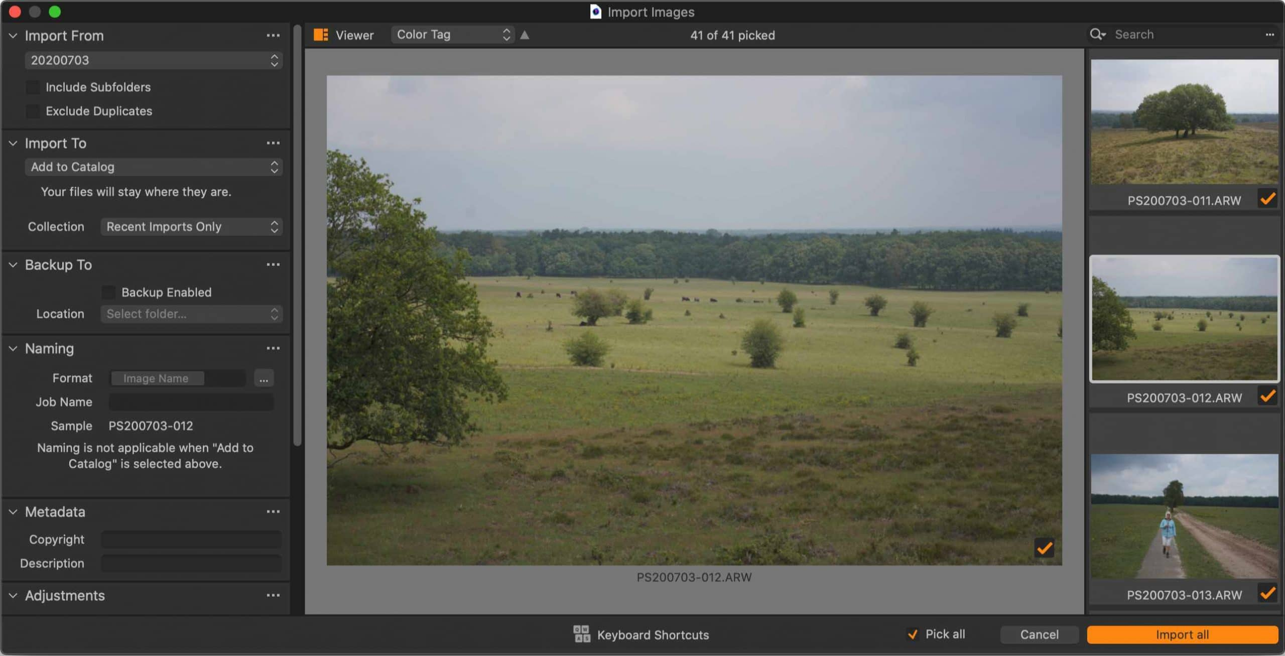 import images, large viewer, capture one 21 update 1