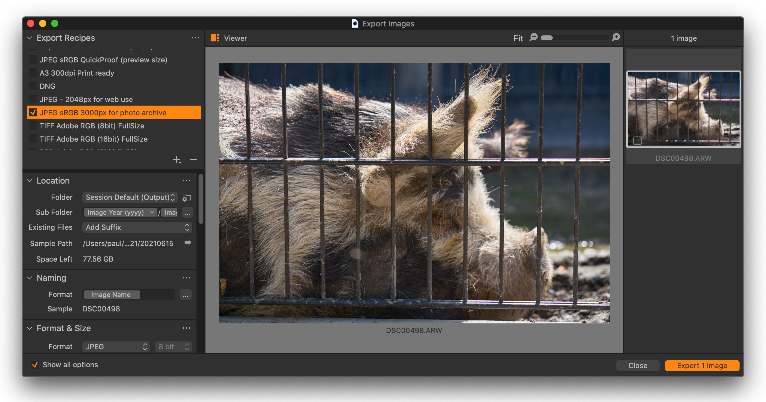 export images dialog with large viewer