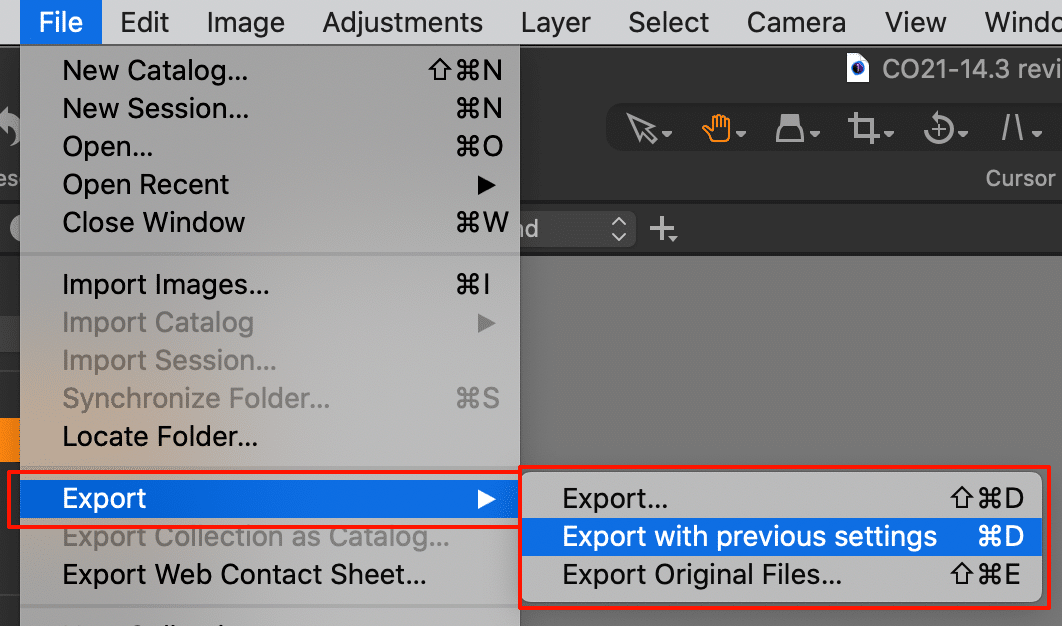 file menu with new export options