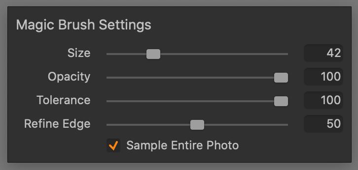 magic brush,settings, capture one 21 update 3