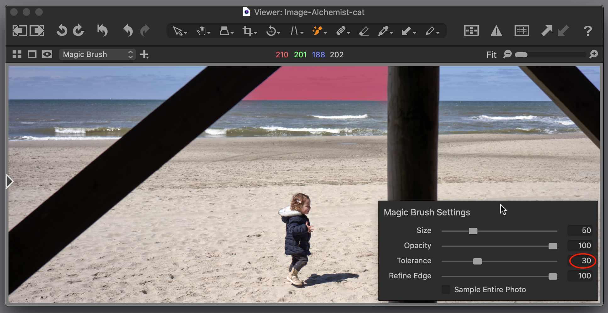 magic brush, tolerance 30, capture one 21 update 3