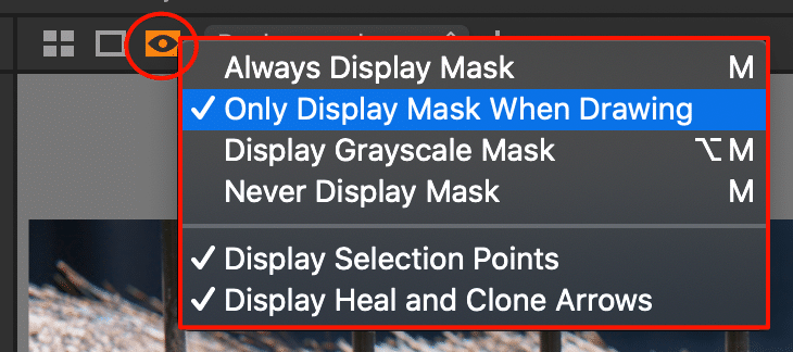 viewer with new 'mask visibility settings', capture one 21 build 14.3