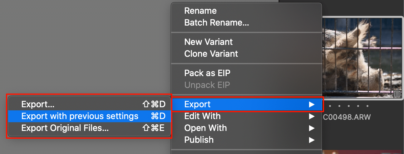 thumbnail with new export options