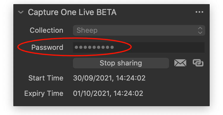 capture one live (beta) tool, capture one 21 update 3 and 4 review